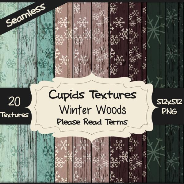 20-winter-woods