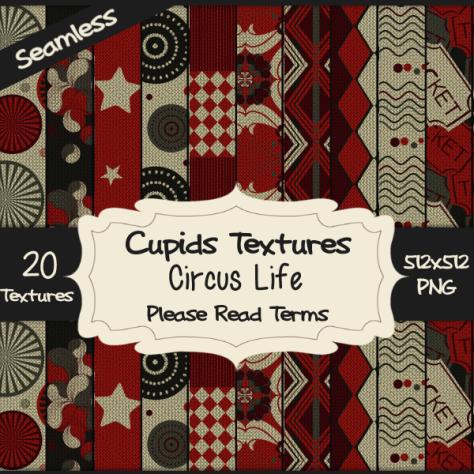 20-circus-life